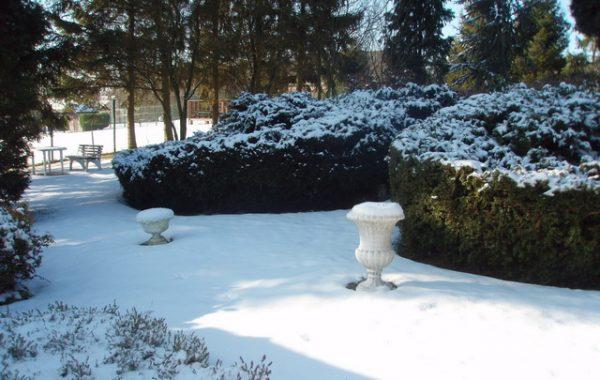 Chaletdepaepe Winter